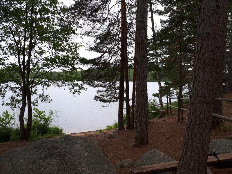 Hiekkapohjainen luonnonranta - Määkijän jokamiestulipaikan yhteydessä on oivallinen hiekkapohjainen luonnon ranta, jossa on helppo vaikka pulahtaa uimaan.