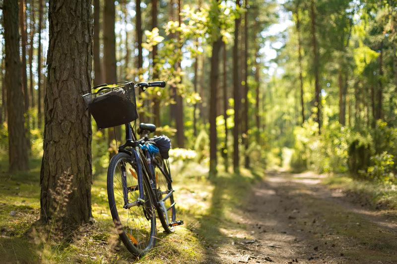 Retki- ja maastopyöräily
