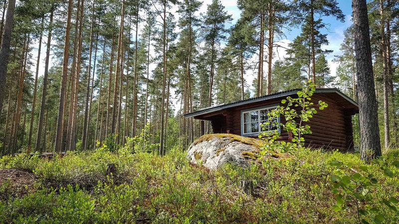 Aitoa metsän elämää Verlan metsäiset kämpissä